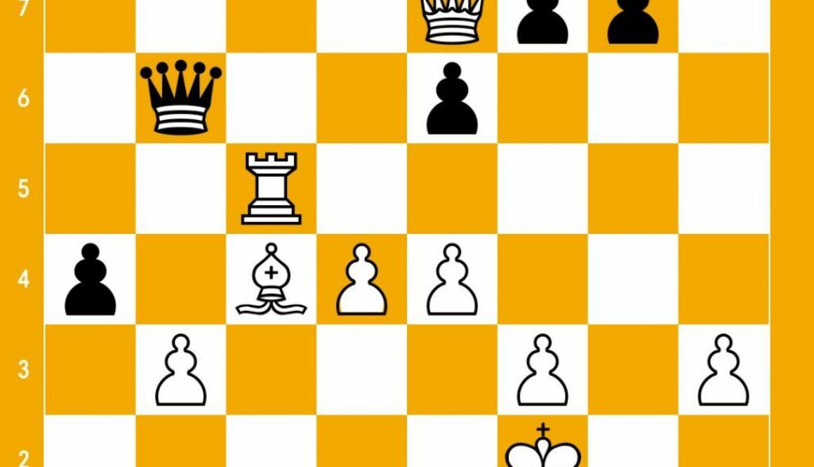 position_1115443891.jpg