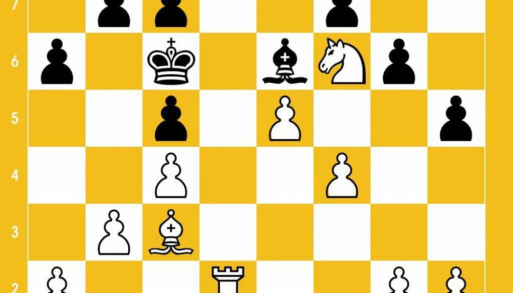 position_1475799780.jpg