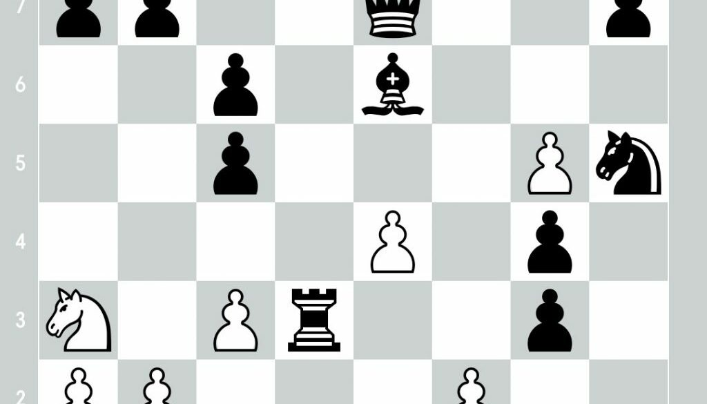 position_1921894862.jpg