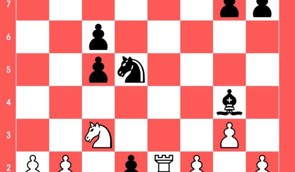 position_190450071654625374.jpg