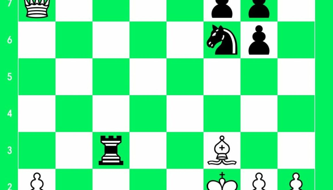 position_3297190591548324008.jpg